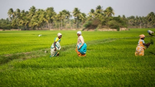 Congress, states, Planning Commission all wanted agri reforms; what changed now?