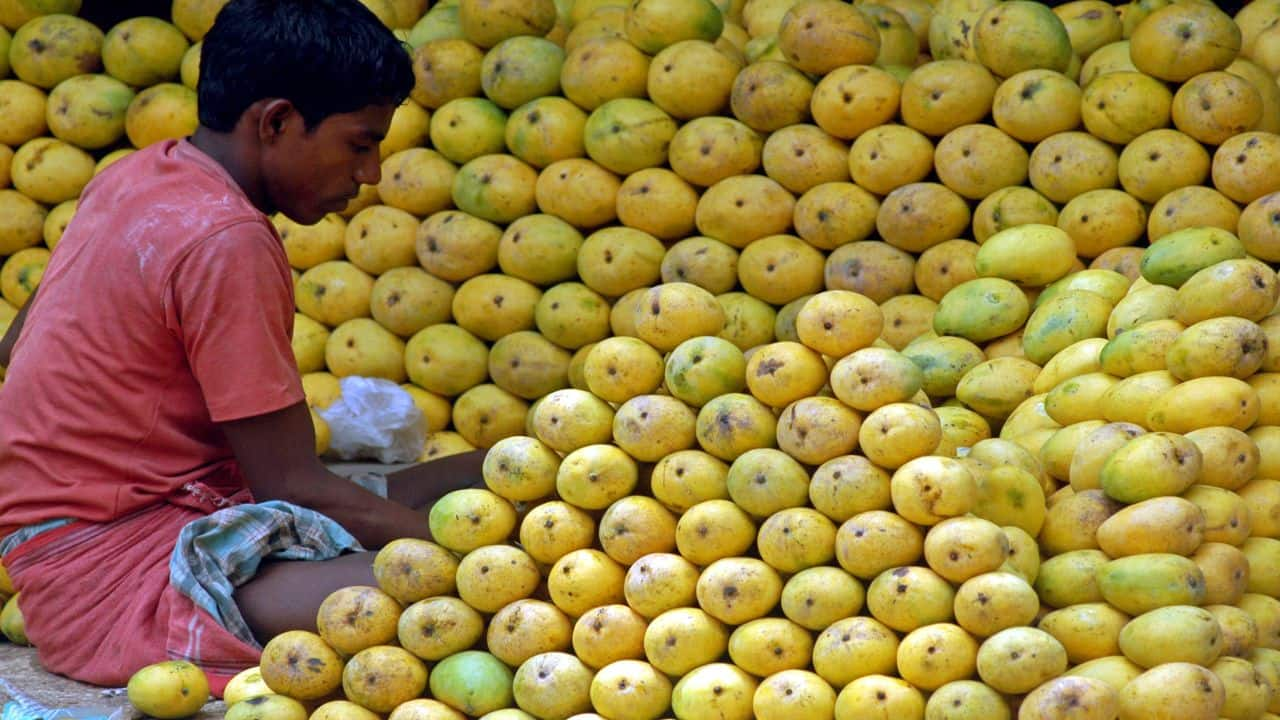 Halt in exports, relaxation in APMC norms prompts mango farmers to sell directly to consumers