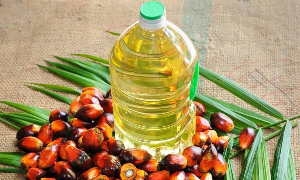 Exclusive   Palm oil in return for rail line construction: India, Malaysia mull barter deal