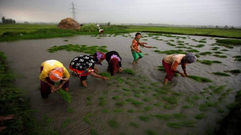 Big Data roped in to transform India'sagriculture