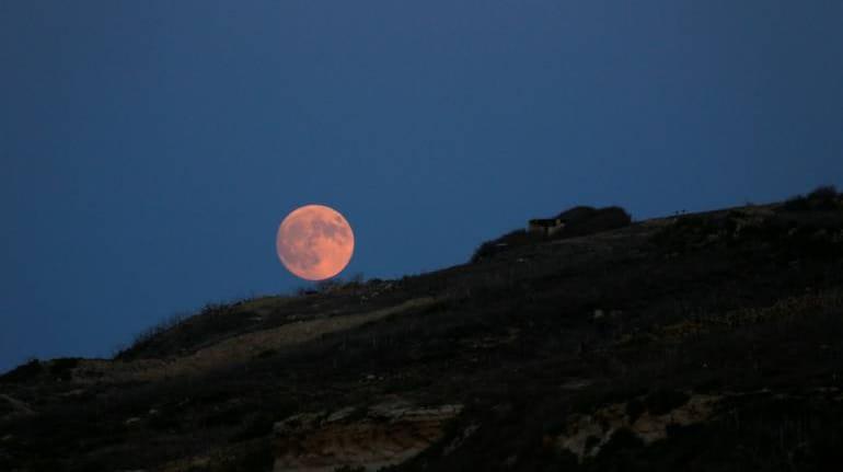 biggest bet on green moon