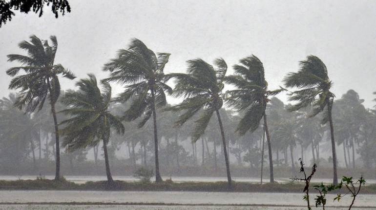 India's monsoon rain below average for fifth straight week ...