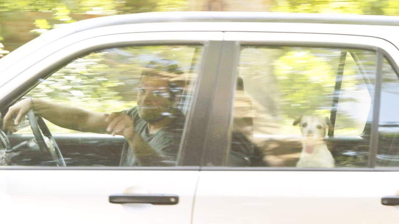 Rahul Gandhi takes pet dog Pidi for a drive; photo goes viral