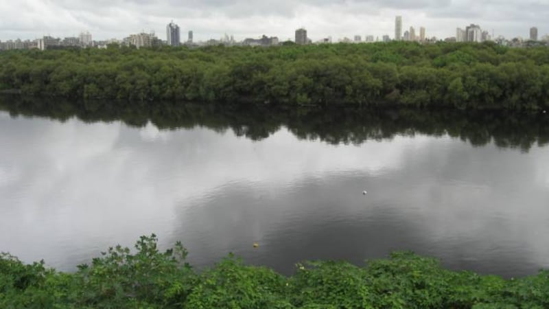 Can Sharavathi river survive another hydropower project?