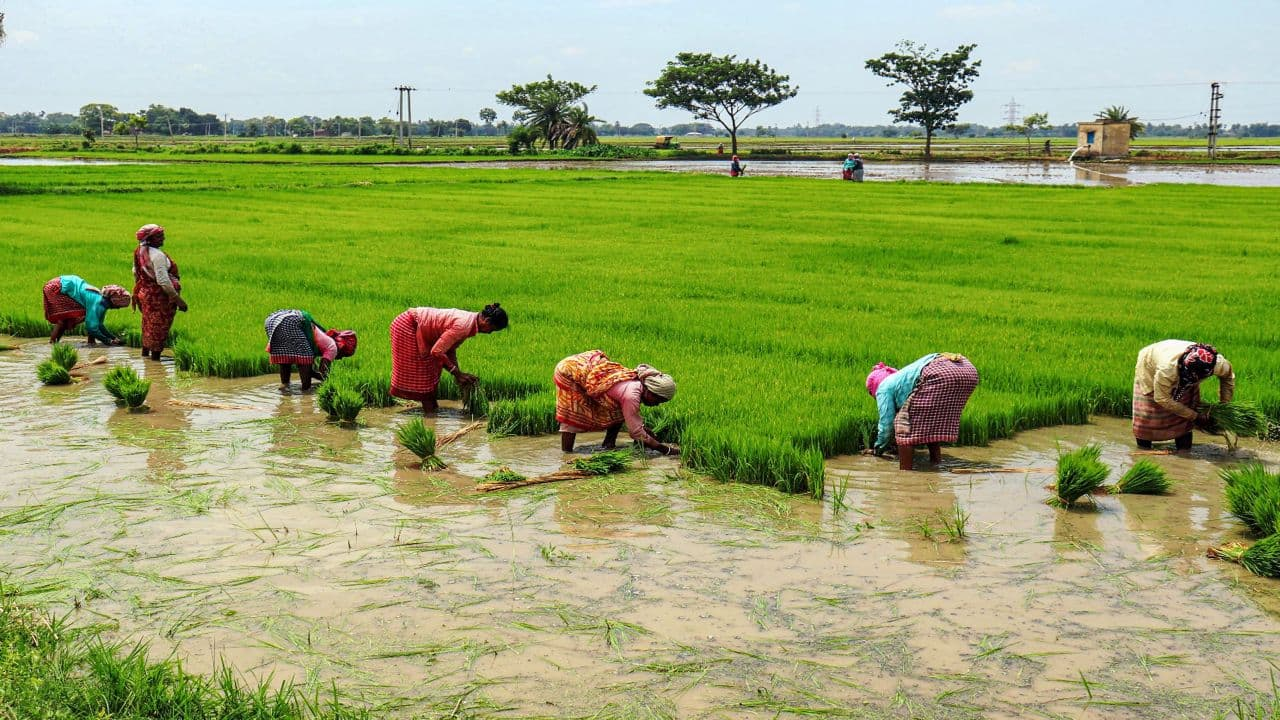 Farm package to boost rural economy, benefit FMCG companies