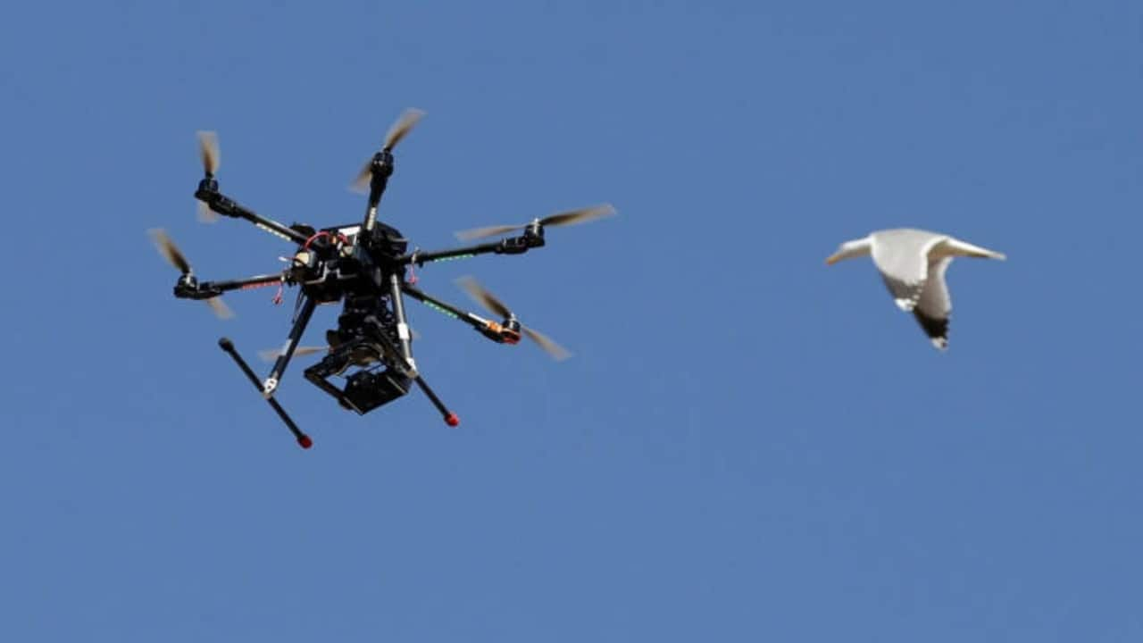 Explained: Here's what a standard drone insurance policy will look like in India