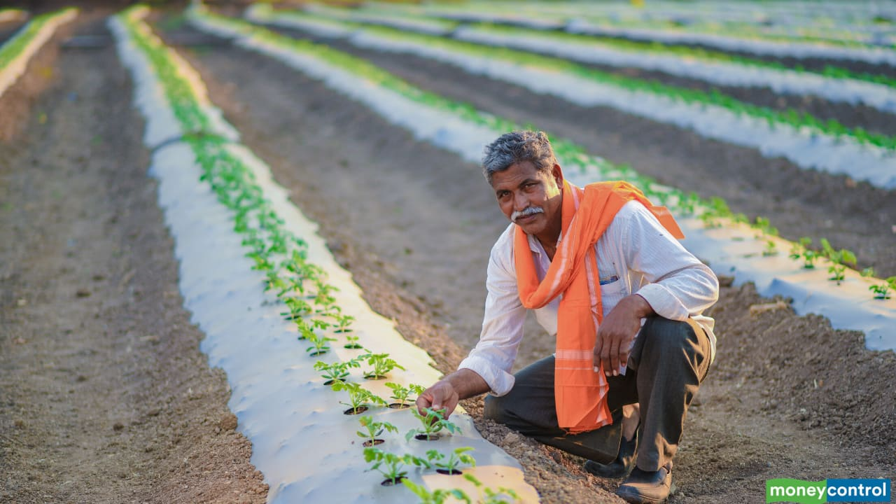 Farm deregulation reforms – How they stand to bring about a systemic change