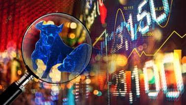 Rakesh Jhunjhunwala, Radhakishan Damani increase stake in some mid, smallcaps; should you follow?