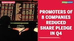 Why promoter pledged share should not raise alarm