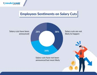 preview-gallery-Jobseeker-survey-infographic-4