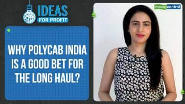 Ideas For Profit | Polycab India is getting back on its feet, a good bet for the long haul