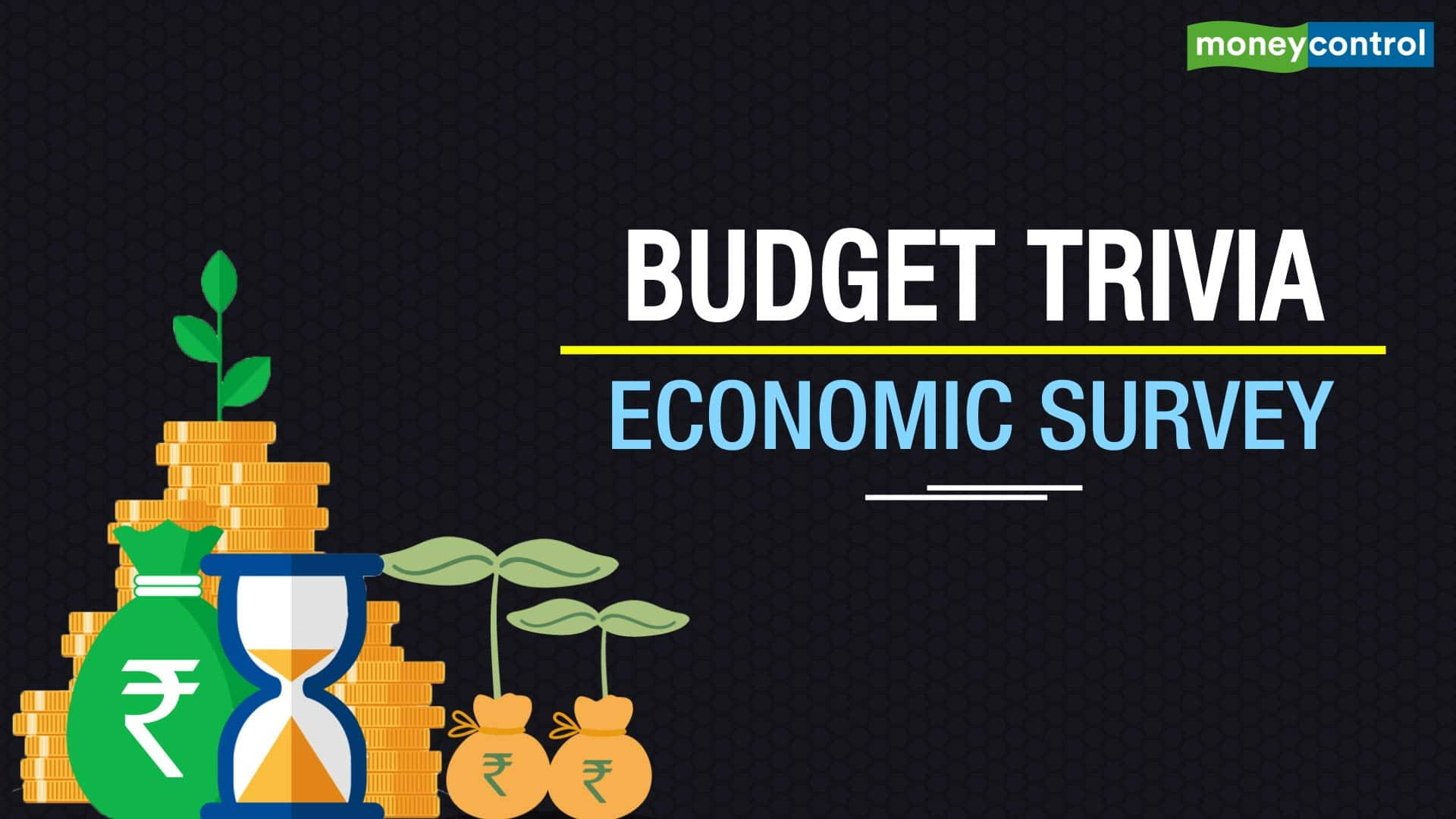 Explained| Questions the Economic Survey 2021 will answer