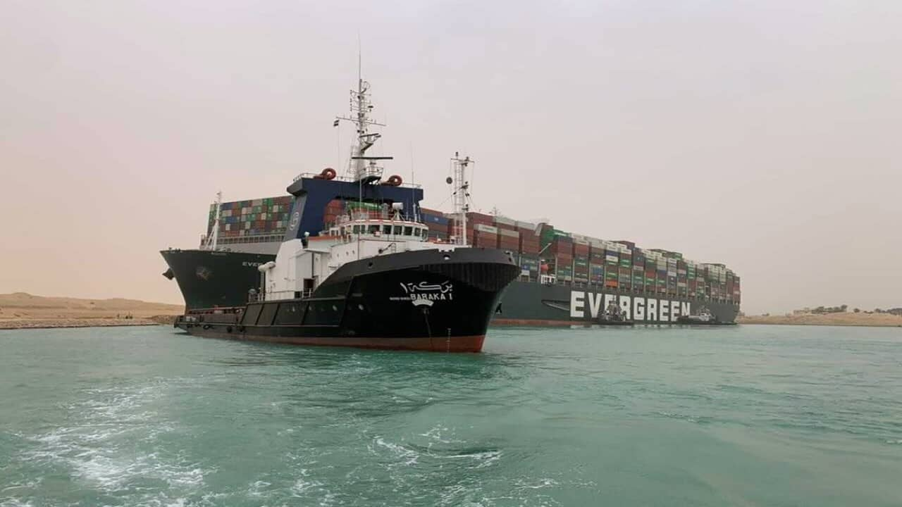 Exclusive   Two Indian-owned ships stuck in Suez Canal bottleneck, says industry body