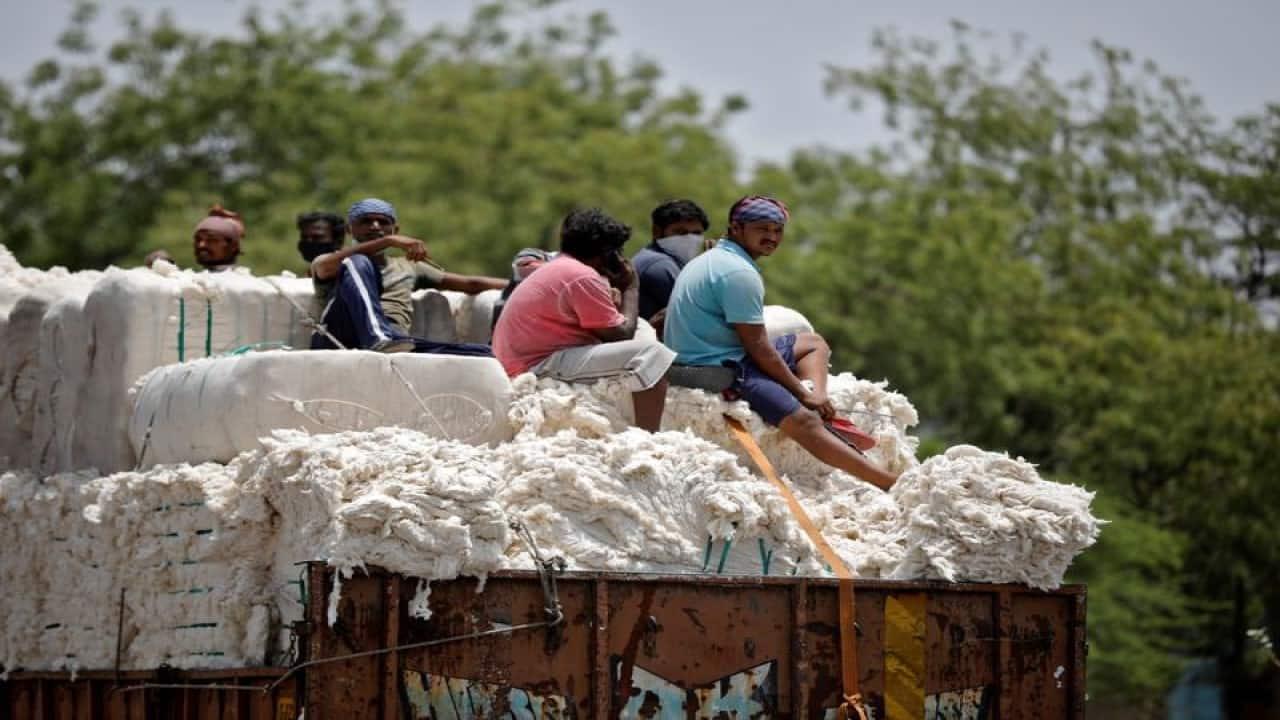 Cotton futures dip marginally to Rs 21,780 per bale on weak global cues