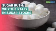 Sugar stocks in a sweet spot