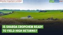 Ideas For Profit | Sharda Cropchem