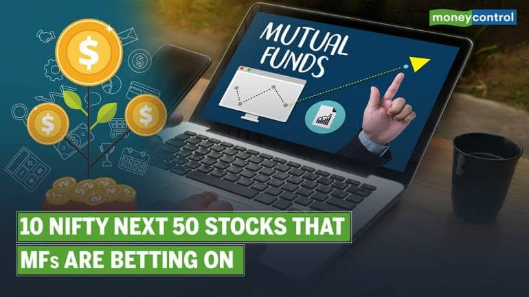 These Nifty Next 50 index stocks are fund managers' favorites; Should you invest?